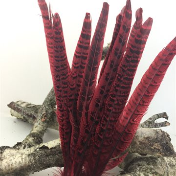 Happy Birthday Feather red  15-20cm 10-12 pcs. in a pack